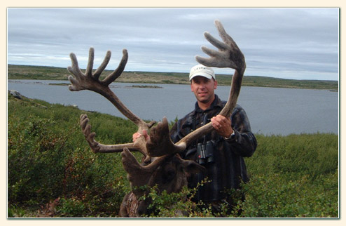 Quebec Labrador Caribou Hunts Require Careful Planning And Attention To Detail Our Outfitters Are Organized Provide Hunters With A Memorable